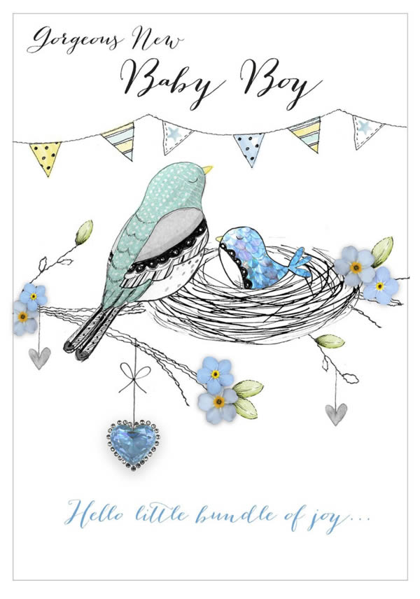Baby Boy Blue Bird Greetings Card Published by ©Second Nature